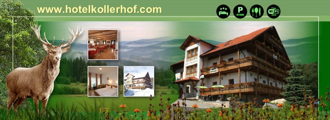 Hotel Kollerhof Hamry na Šumavě